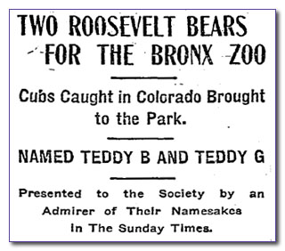 The Roosevelt Bears arrive at the Bronx Zoo, NYT 1906-06-01